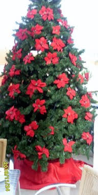Mukavaa joulun odotusta!